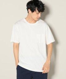 JOURNAL STANDARD relume Men's/HEALTHKNIT×relume / 別注ヘルスニット R/CポケットTシャツ/501128096