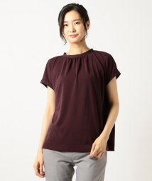 ICB(LARGE SIZE)/【初秋カラー夏素材】Knit Combi Smooth カットソー/501133098