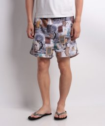 SHIPS MEN/【SHIPS JET BLUE】AVEC:PRINT SHORTS/501112797