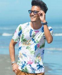 CavariA/CavariA【キャバリア】アロハ総柄プリントクルーネック半袖Tシャツ/501161260