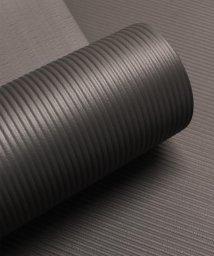 ninon/【厚さ10mm】リッチでソフトなヨガマット/トレーニングマット ゴムバンド付き/501170459