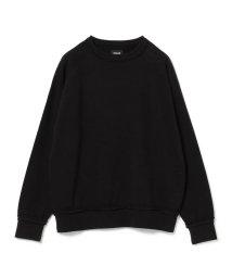 BEAMS OUTLET/BEAMS / タチキリ ラグラン スウェットシャツ/501100847