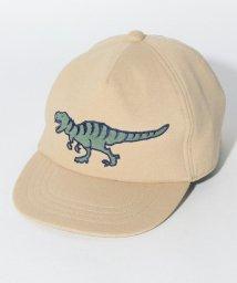 kladskap/恐竜アップリケキャップ/501182721