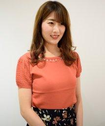 Eimy Peal by POWDER SUGAR/透かし半袖衿ビジュ付きニット/501191466