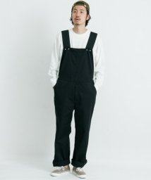 URBAN RESEARCH Sonny Label/Dickies×Sonny label 別注オーバーオール/501222897