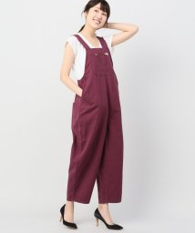 JOINT WORKS/Lee loose overalls/501224792