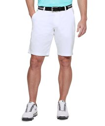 UNDER ARMOUR/アンダーアーマー/メンズ/18S UA TAKEOVER GOLF SHORT TAPER/501242782