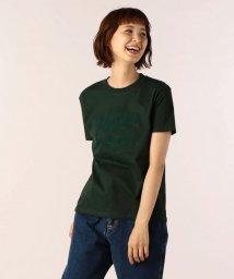 FREDYMAC/手書きPIZZA Tシャツ/501243587