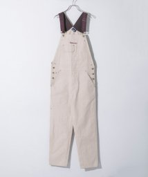 URBAN RESEARCH/PATERSON BACKSPIN OVERALLS/501245885