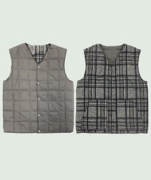 TAION/REVERSIBLE V DOWN VEST/501262375