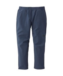 THE NORTH FACE/ノースフェイス/レディス/APEX FLEX ANKLE PANT/501273969