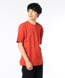 GLOSTER/BIG Tシャツ/501263632
