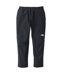 THE NORTH FACE/ノースフェイス/レディス/APEX FLEX ANKLE PANT/501277693
