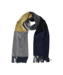 Demi-Luxe BEAMS/BEGG & CO / 別注 6カラーストール/500984704