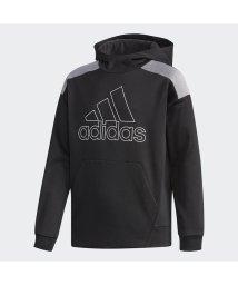 adidas/アディダス/キッズ/B ESS CLIMAWARM スウェットパーカー (裏起毛)/501288891