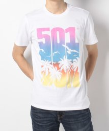 LEVI'S MEN/501(R) GRAPHIC TEE 501 SCENIC WHITE GRAP/501270935