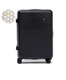 HaNT/ハント スーツケース HaNT ハント マイン mine Ltd キャリーケース 47L ファスナー 1~3泊 旅行 限定カラー  ACE エース 06054/501303822