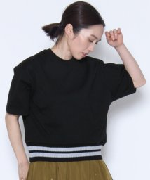 LASUD/★【ラディエイト/RADIATE】裾リブラインTシャツ/501279032