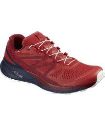 SALOMON/サロモン/メンズ/FOOTWEAR SENSE RIDE HIGH RISK /NAVY BLAZ/501328532