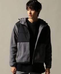 JOURNAL STANDARD/THE NORTH FACE / ザ ノースフェイス :Denali Hoodie/501335222