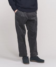 BEAUTY&YOUTH UNITED ARROWS/<TUBE> IN TACK PANTS 2/パンツ/501344195