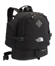 THE NORTH FACE/ノースフェイス/WASATCH/501351392