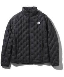 THE NORTH FACE/ノースフェイス/レディス/ASTRO LIGHT JACKET/501356879