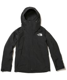 THE NORTH FACE/ノースフェイス/メンズ/MOUNTAIN JACKET/501356886