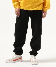 JOURNAL STANDARD/LOS ANGELES APPAREL/ロサンゼルスアパレル:14oz. Heavy Fleece Pants/501370960