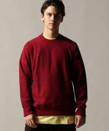 JOURNAL STANDARD/Toronto Knitting Mills/トロント・ニッティングミルズ:classic crew neck/501380340