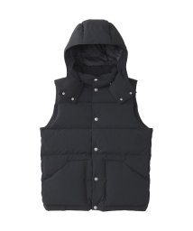 THE NORTH FACE/ノースフェイス/レディス/CAMP SIERRA VEST/501384854