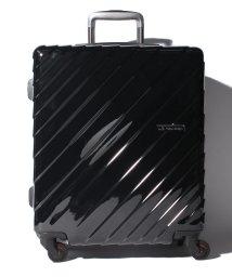 HIDEO WAKAMATSU/【HIDEO WAKAMATSU】 スーツケース ナロースクエア M/501351729