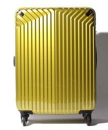 HIDEO WAKAMATSU/【HIDEO WAKAMATSU】 スーツケース インライト M/501351741