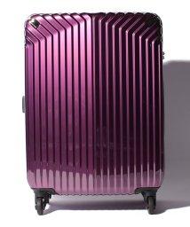 HIDEO WAKAMATSU/【HIDEO WAKAMATSU】 スーツケース インライト M/501351742