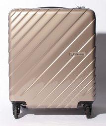 HIDEO WAKAMATSU/【HIDEO WAKAMATSU】 キャビンスクエア 機内持ち込み対応サイズ/501351745