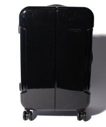 HIDEO WAKAMATSU/【HIDEO WAKAMATSU】 スーツケース ナローII M/501351756