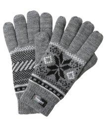 JIGGYS SHOP/スノージャガードシンサレートグローブ / 手袋 グローブ メンズ 防寒 ニット Thinsulate シンサレート 中綿/501407922