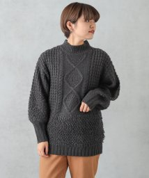 NICE CLAUP OUTLET/ケーブル×ループニット/501395655