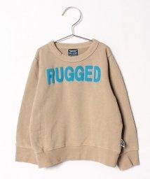RUGGEDWORKS/ロゴ裏毛SW/501376559