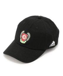LHP/PESOSX/ぺソックス/SEASON5 AIDS HAT/501435017