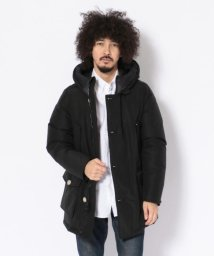 BEAVER/WOOLRICH/ウールリッチ ARCTIC PARKA NF/アークティックパーカー NF/501436872