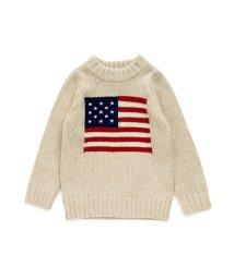 BREEZE / JUNK STORE/星条旗セーター/501348291