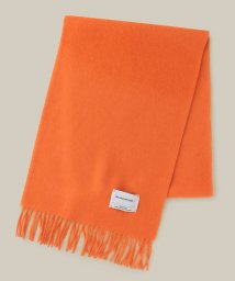 ADAM ET ROPE'/ 【THE INOUE BROTHERS】BRUSHED SCARF /501413519