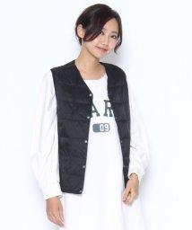 LASUD/【タイオン TAION】ラディエイト別注Vネック ボタン ダウンベスト/501417068