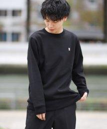 GIORDANOM/裏起毛ベーシッククルー/501144745