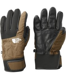 THE NORTH FACE/ノースフェイス/EARTHLY GLOVE/501448249