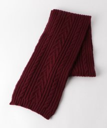 BEAUTY&YOUTH UNITED ARROWS/<INVERALLAN(インバーアラン)> CABLE SCARF/マフラー/501455898