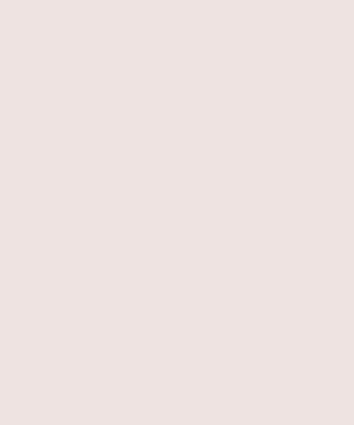 reca(レカ)/ボリューム袖ゆったりスウェット/100589