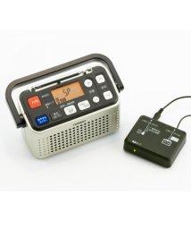 OTHER/3バンドラジオ付ワイヤレススピーカー/501446640
