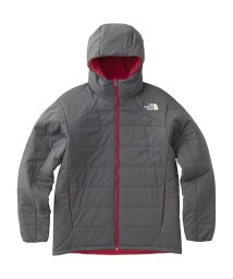THE NORTH FACE/ノースフェイス/メンズ/REVERSIBLE ANYTIME INSULATED HOODIE/501466824